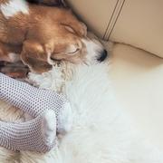 睡眠時の冷え対策に靴下を履いて寝るメリットとデメリット